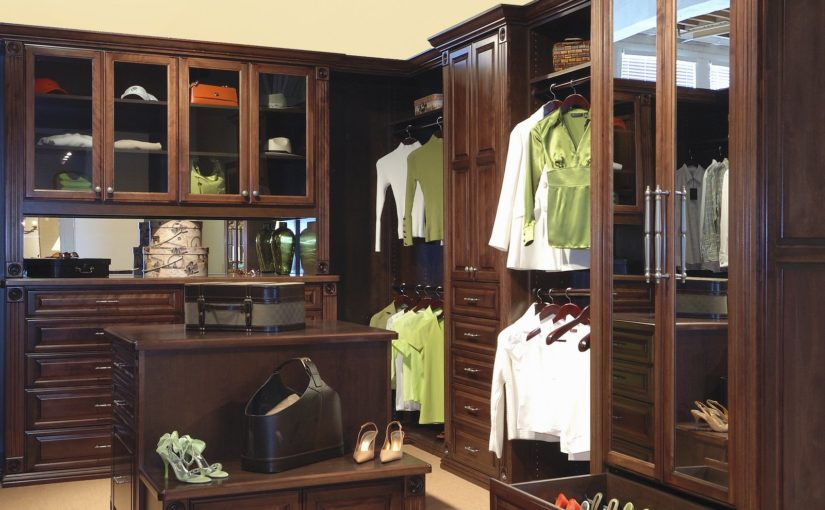 20 Transitional Closet Design Ideas