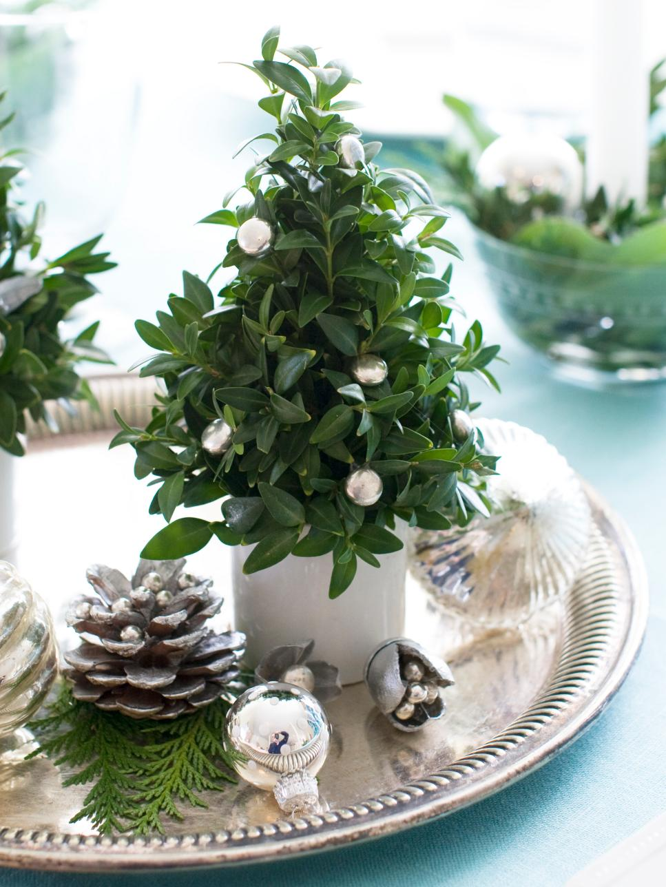 Christmas Boxwood Tree Centerpiece