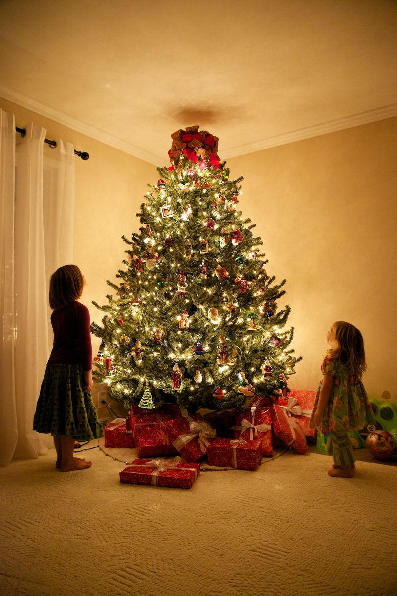 Decorated Christmas Tree For 2016