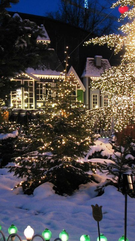 Beautiful christmas lights in snow - Buy christmas decorations online india ...