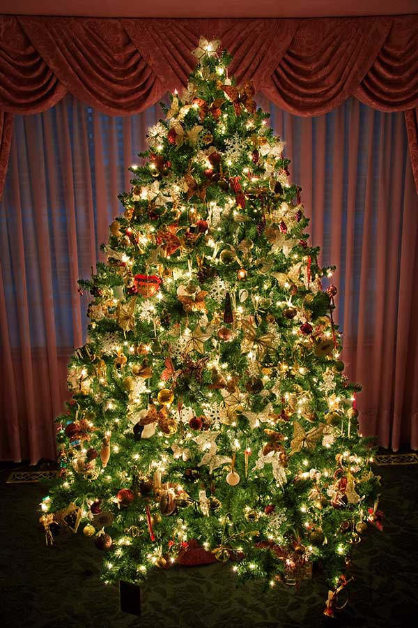 beautiful-decorated-christmas-trees