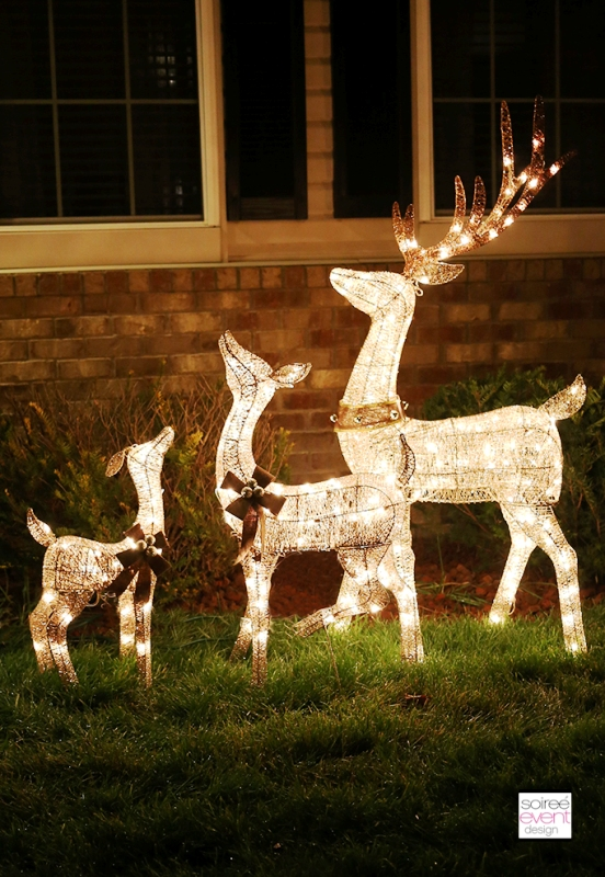 big-lots-christmas-light-decorations-frant-yards