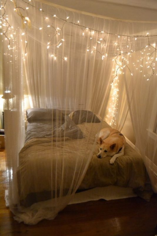 foxy-cool-room-designs-with-christmas-lights