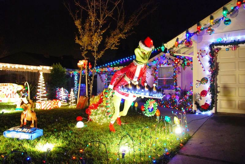 25 Grinch Christmas Lights Decorations Ideas