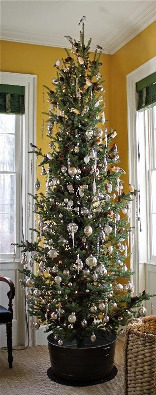 tall-skinny-christmas-trees-fine-ideas