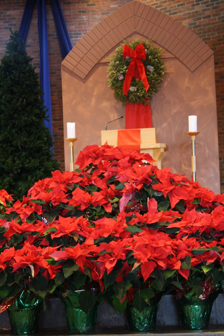 Awesome Church Christmas Decorations