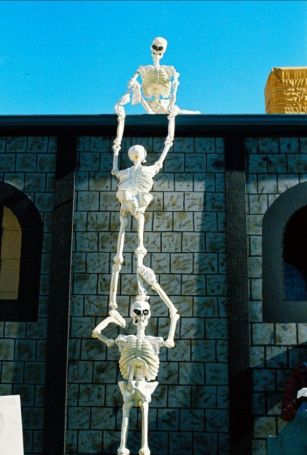 Awesome Skeletons Outdoor Halloween Decorations