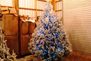 30 White And Blue Christmas Decorations Ideas