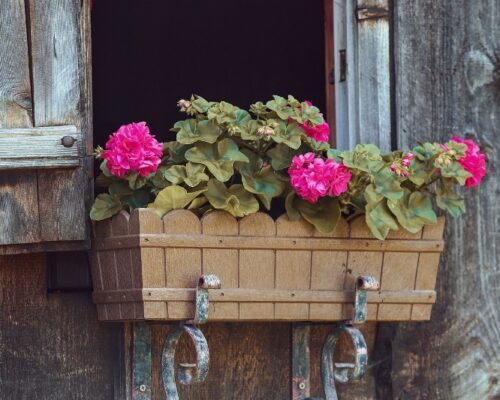 The Smart Way To Hang Flower Window Boxes on Your Home's Exterior