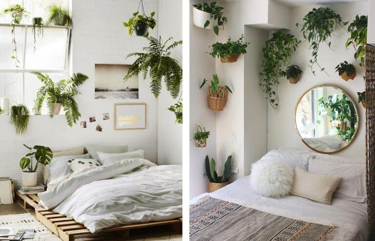 Decorating with plants is also an option